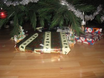 Kerst2008-1.jpg