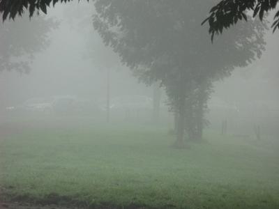 mist10.jpg