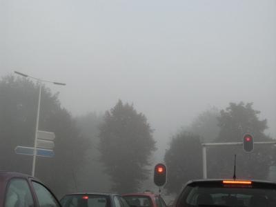 mist11.jpg