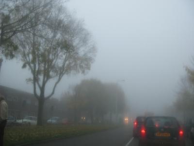 mist13.jpg