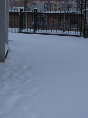sneeuw10.jpg