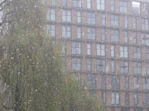 sneeuw7.jpg